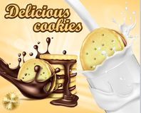 Bandera de la publicidad para las galletas del bocadillo del chocolate Imágenes de archivo libres de regalías