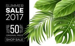 Bandera de la venta, cartel con las hojas de palma, hoja de la selva y letras de la escritura Fondo tropical floral del verano Ve ilustración del vector