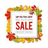 Bandera de la venta con las hojas de otoño brillantes aisladas en el fondo blanco Imagen de archivo