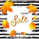 Bandera de la venta del otoño con las hojas de la caída libre illustration