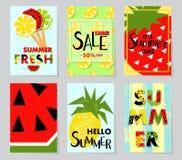 Bandera de la venta del verano con la fruta, lugar para el texto Fondo del vector Fotografía de archivo libre de regalías