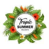 Bandera de la venta del verano con las flores y las hojas tropicales para la promoción Fotografía de archivo