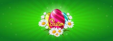 Bandera de la web de Pascua con los huevos y las flores pintados de la manzanilla ilustración del vector