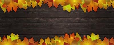 Bandera de las hojas de otoño stock de ilustración