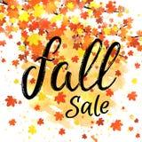 Bandera de las letras de la venta de la caída Cartel estacional del otoño del descuento con tipografía dibujada mano texturizada  Imagen de archivo libre de regalías