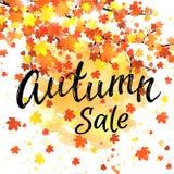 Bandera de las letras de la venta del otoño Cartel estacional de la caída del descuento con tipografía dibujada mano texturizada  Foto de archivo