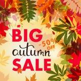 Bandera de las ventas con las hojas de otoño multicoloras Vector Imagen de archivo