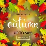 Bandera de las ventas con las hojas de otoño multicoloras Vector Fotografía de archivo