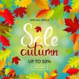 Bandera de las ventas con las hojas de otoño multicoloras Vector Imágenes de archivo libres de regalías