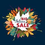 Bandera de las ventas con las hojas de otoño multicoloras Vector Fotos de archivo