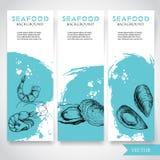 Bandera de los mariscos con el fondo azul de la acuarela y la comida dibujada mano Bosqueje el camarón, las ostras y la cáscara f ilustración del vector
