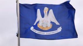 Bandera de Luisiana almacen de video