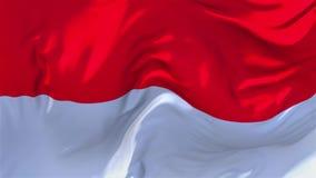 195 Bandera de Mónaco que agita en fondo inconsútil continuo del lazo del viento almacen de metraje de vídeo