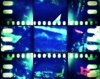 Bandera de neón de la tira de película imágenes de archivo libres de regalías