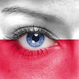 Bandera de Polonia Foto de archivo libre de regalías