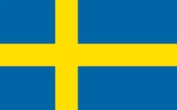 Bandera de Suecia, ejemplo del vector Foto de archivo