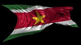 Bandera de Suriname ilustración del vector