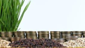 Bandera de Tanzania que agita con la pila de monedas del dinero y las pilas de trigo almacen de video
