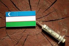 Bandera de Uzbekistán en un tocón con la jeringuilla que inyecta el dinero fotografía de archivo libre de regalías