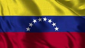 Bandera de Venezuela - 4K realista - bandera de 30 fps de la Venezuela que agita en el viento ilustración del vector