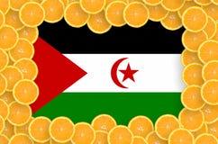 Bandera de Western Sahara en marco fresco de las rebanadas de los agrios stock de ilustración