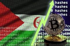 Bandera de Western Sahara y flecha verde de levantamiento en la pantalla minera del bitcoin y dos bitcoins de oro físicos ilustración del vector