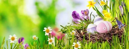Bandera decorativa del panorama del huevo de Pascua Imagen de archivo