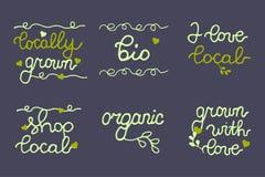 Bandera del alimento biológico, logotipo, colección de los iconos Imágenes de archivo libres de regalías