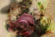 Bandera del arte de la flor Foto de archivo