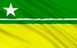 Bandera del Boa Vista en Roraima, el Brasil foto de archivo