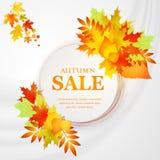 Bandera del descuento de la publicidad con las hojas caidas Mano de la venta del otoño dibujada Ilustración del vector Imagen de archivo libre de regalías