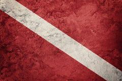 Bandera del equipo de submarinismo del estilo del vintage El buceador abajo señala por medio de una bandera Imagen de archivo libre de regalías
