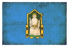 Bandera del Grunge de Leinster Irlanda Imágenes de archivo libres de regalías