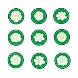 Bandera del jazmín en un vector verde del cirle Fotografía de archivo libre de regalías