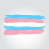 Bandera del orgullo del transexual en una forma del movimiento del cepillo libre illustration