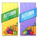 Bandera del otoño fijada con las frutas y verduras Imágenes de archivo libres de regalías