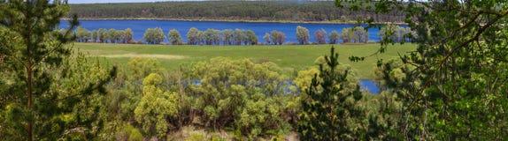 Bandera del paisaje de la primavera, panorama - visión a través de los pinos en el río de Desna con los prados inundados y bosque Imagen de archivo