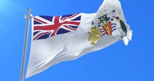Bandera del territorio antártico británico que agita en el viento en lento con el cielo azul, lazo