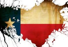 Bandera del Texan ilustración del vector