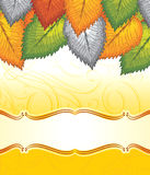 Bandera del vector de hojas de lujo Imagen de archivo libre de regalías