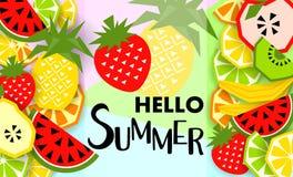 Bandera del verano con la fruta, lugar para el texto Vector Foto de archivo libre de regalías