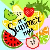 Bandera del verano con la fruta, lugar para el texto Vector Imagen de archivo libre de regalías