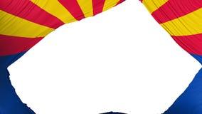 Bandera dividida del estado de Arizona stock de ilustración