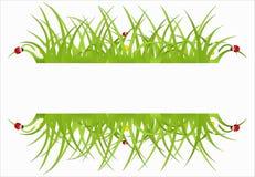 Bandera ecológica verde Fotos de archivo libres de regalías