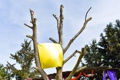 bandera en blanco, colgando en árbol fotos de archivo