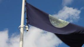 Bandera en el viento almacen de metraje de vídeo