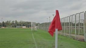 Bandera en la esquina del fútbol almacen de video