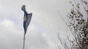 Bandera escocesa, agitando con el viento encima de una asta de bandera, delante de un cielo nublado gris con ojeadas de las ramas almacen de video