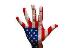 bandera Estados Unidos de la palma Foto de archivo