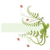 Bandera floral Fotografía de archivo libre de regalías